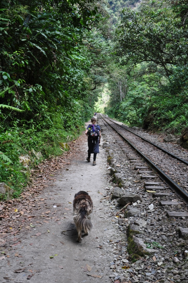 The final miles. My girl and Machu, the dog who adopted us... for part of the journey.
