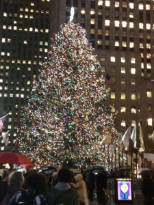 THE Tree, in all its glory!
