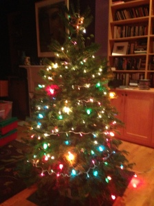 My boys bought a tree– a tiny tree, but the loveliest ever, and put the lights on.