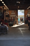 The barn... the place I love.